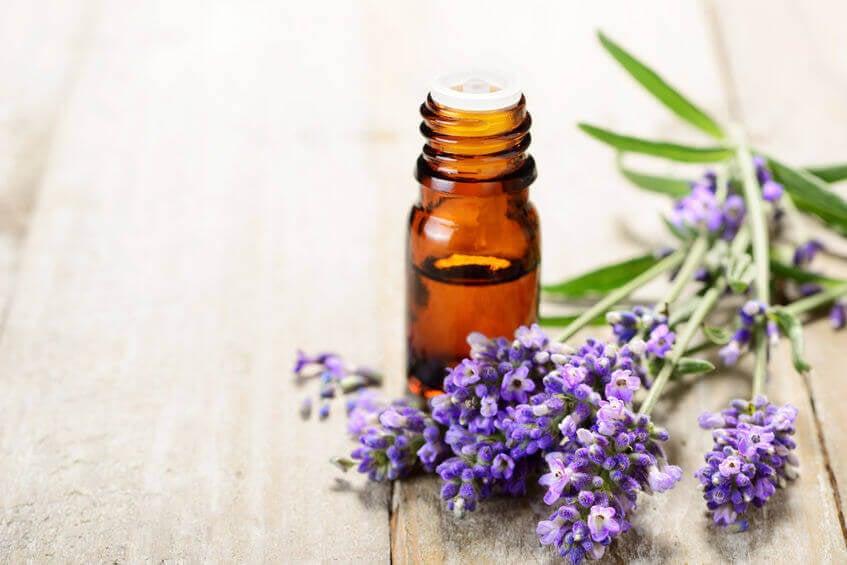 essential oils | City Beauty